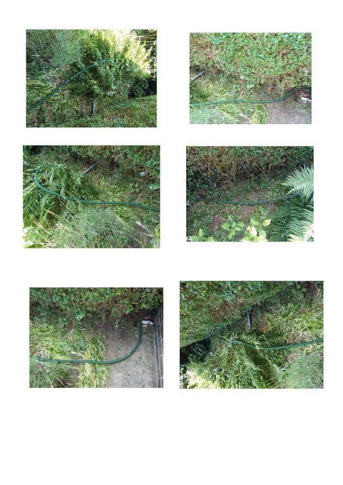 garden cables.jpg