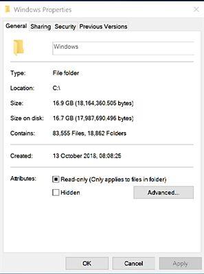 Windows size.jpg