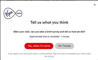 persistent survey.jpg