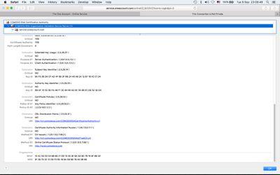 COMODO_RSA_Organization_Validation_Secure_Server_CA_Certificate_for_service.oneaccount.com-2.jpg