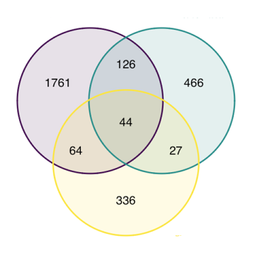 14-venn-diagramm3_75.png